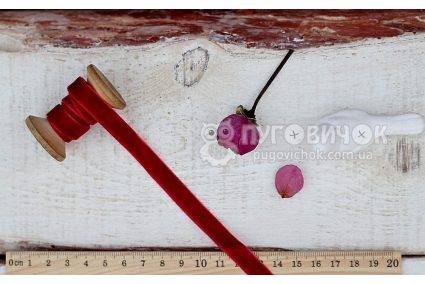 Стрічка оксамитова 10мм бордова