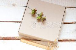Коробка из крафт-картона 260*260*50мм
