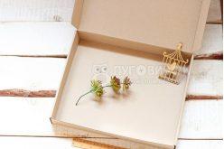 Коробка из крафт-картона 300*240*90мм