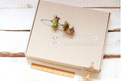 Коробка з крафт-картону 340*280*45мм