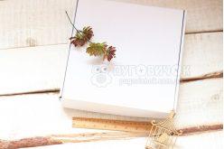 Коробка з крафт-картону 260*260*50мм біла
