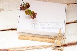 Коробка з крафт-картону 250*180*40мм біла