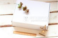 Коробка из крафт-картона 300*240*90мм белая