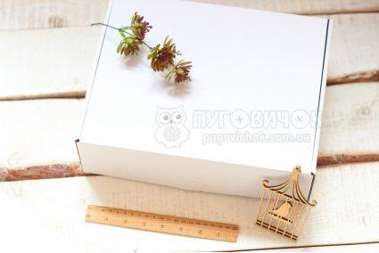 Коробка з крафт-картону 300*240*90мм біла